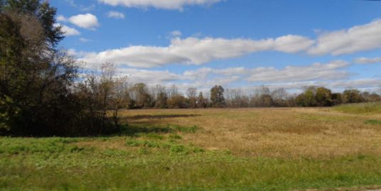 32.04 ACRES Corner of Cadmus and Baldwin